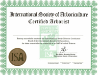 Become A Certified Arborist in Illinois with the IAA