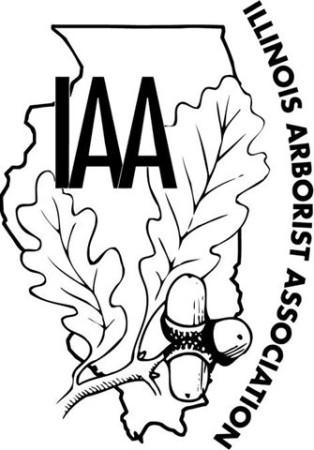 IAA logo smaller size