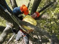 Aerial Rescue 2
